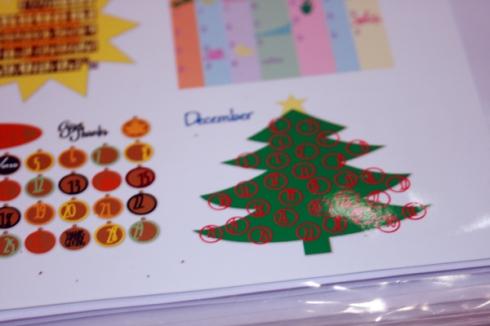 December Closeup